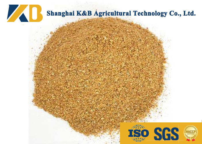 Feed Grade Healthy Corn Protein Powder ISO HACCP Certificate For Fodder